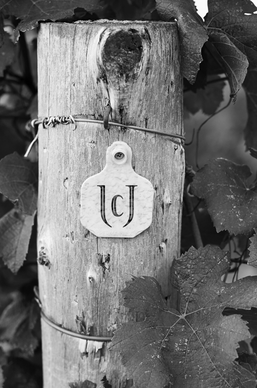 Le Grand Clos post in the vineyard